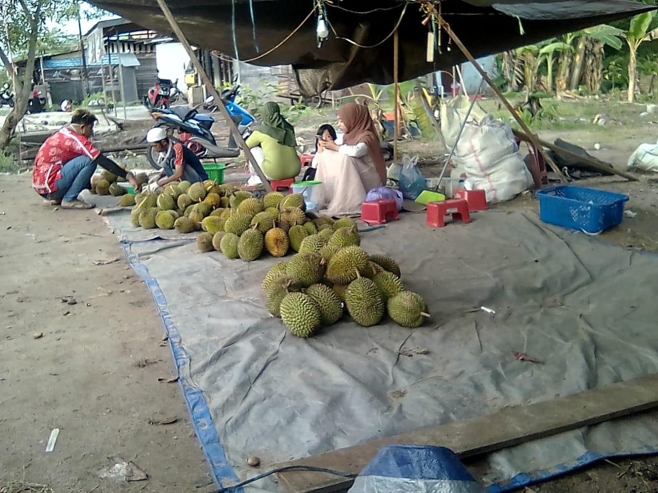 Harga Durian Kasongan