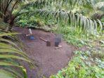 Foto mayat Mr X yang ditemukan di kebun kelapa sawit, Jumat (21/5).
