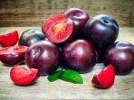 makan buah Prem setiap hari dapat mengurangi risiko penyakit kardiovaskular