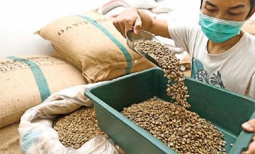 Potensi industri kopi tanah air